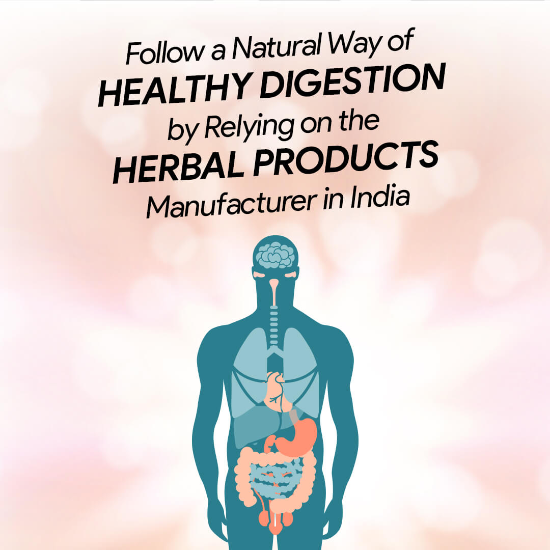 Try Ayurvedic Churna for Digestion by Herbal Products Manufacturer in India